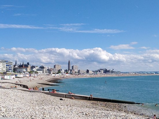 Sur la plage du Havre…coquillages et crustacés